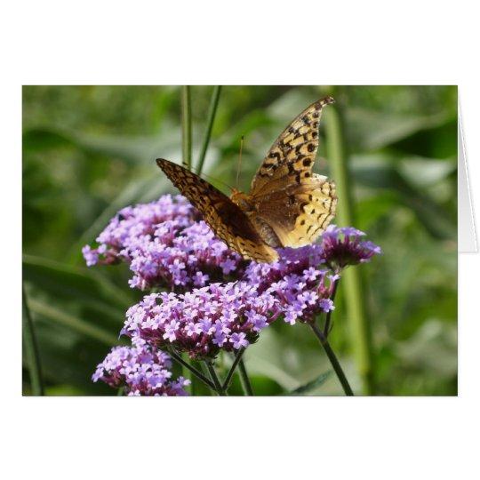 Verbene und Schmetterling notecard Karte