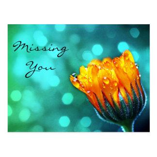 Vermisst Sie, goldene Ringelblume auf aquamarinem Postkarte