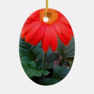 Verrücktes Gänseblümchen Ovales Keramik Ornament