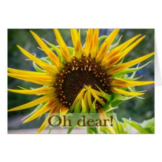 Verspäteter Geburtstag der Sonnenblume Karte