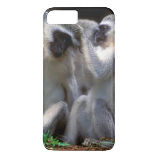 Vervet Affen (Cercopithecus Aethiops) iPhone 8 Plus/7 Plus Hülle