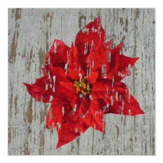 Verwitterter Poinsettia-Winter/Weihnachtshochzeit Quadratische 13,3 Cm Einladungskarte