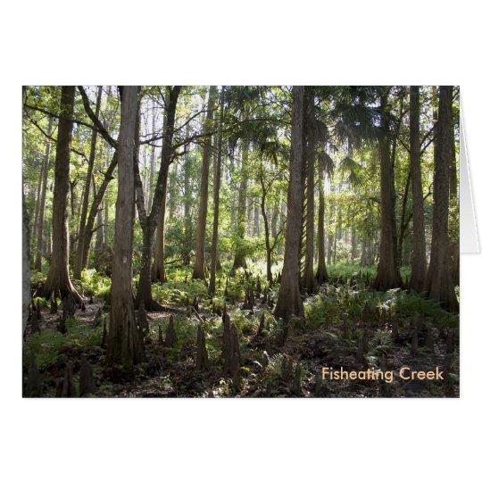 Verzauberter Wald, Fisheating Nebenfluss Mitteilungskarte