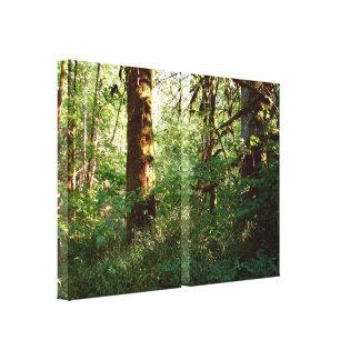 Verzauberter Waldausdehnungs-Leinwand-Druck Leinwanddruck