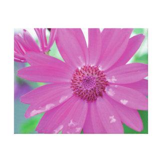 Vibrierende Nahaufnahme-Foto-Rosa-Blume auf Grün Leinwanddruck