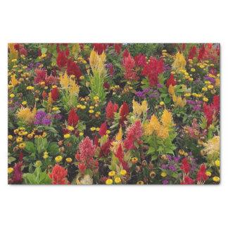 Vibrierender Sommer-Blumen-Garten in Orlando Seidenpapier