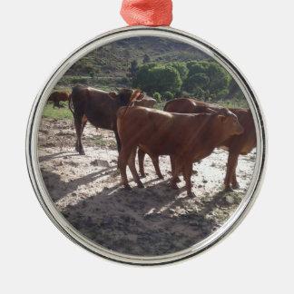 Vieh 1 silbernes ornament