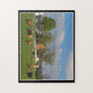 Vieh, das Puzzlespiel 11x14 durch Thomas Minutolo