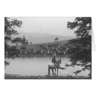 Vieh durch einen Teich mit zwei Cowboys Karte