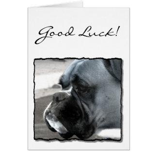 Viel Glück-Boxergrußkarte Grußkarte