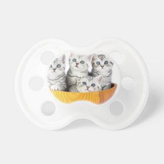 Vier junge Katzen, die in der hölzernen Schüssel Schnuller