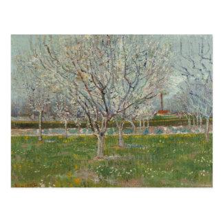 Vincent van Gogh - Obstgarten in der Blüte Postkarte