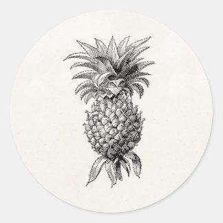 Vintage 1800s Ananas-Illustrations-Ananas Runder Aufkleber