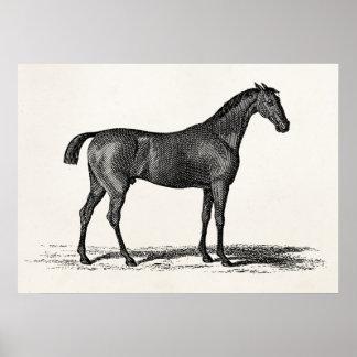 Vintage 1800s englisches Rennen-Pferd - laufende Poster