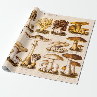 Vintage 1800s Pilz-Vielzahl-Pilz-Schablone Geschenkpapier