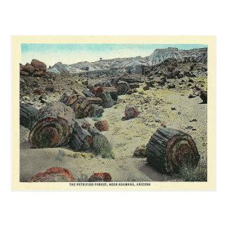 Vintage Arizona-Wüste Postkarte
