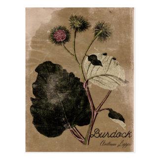 Vintage Artburdock-Blumen-Postkarte Postkarte