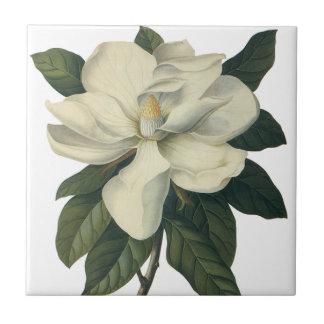 Vintage Blumen blühende weiße Magnolien-Blüte Kacheln