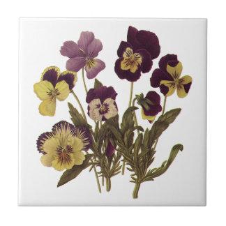 Vintage Blumen, Blumengarten-Stiefmütterchen in Kleine Quadratische Fliese