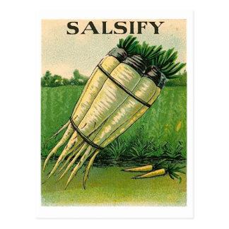 Vintage Bocksbartsamen-Paketpostkarte Postkarte