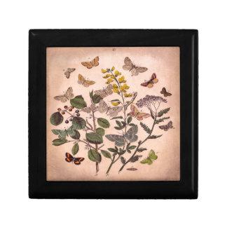 Vintage botanische Blumenillustrations-Wildblumen Kleine Quadratische Schatulle