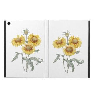 Vintage botanische Kunstsonnenblumen. P.J. Redoute