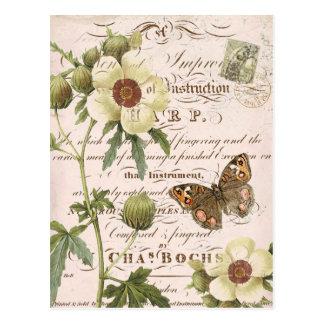 Vintage botanische mit Blumenpostkarte Postkarte