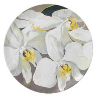 Vintage botanische Orchideen-Blumen mit Blumen Teller