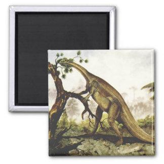 Vintage Dinosaurier, Plateosaurus, der auf Bäumen Quadratischer Magnet