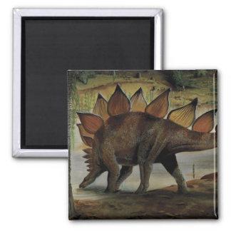 Vintage Dinosaurier, Stegosaurus, Schwanz mit Quadratischer Magnet