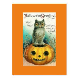 Vintage Eule auf Kürbis-Halloween-Postkarte Postkarte