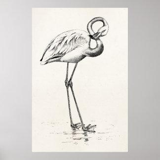 Vintage Flamingo-Vogel-Antiken-Vogel-Schablone Plakatdruck