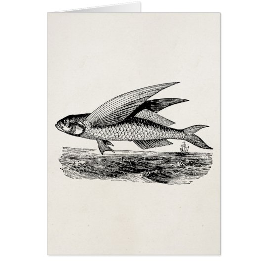 Vintage Fliegen-Fische - Wasserfisch-Schablone Mitteilungskarte
