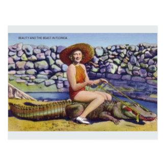 Vintage Florida-Alligatorpostkarte Postkarte