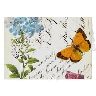 Vintage Frucht und Blumenpostkarte… notecard Karte
