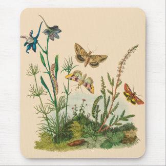 Vintage Garten-Insekten, Schmetterlinge, Raupen Mousepad
