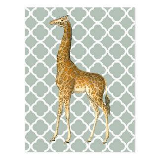 Vintage Giraffe auf grauer Quatrefoil Postkarte