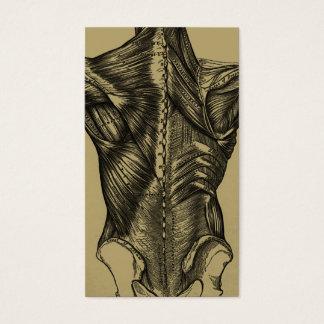 Vintage hintere Anatomie-Geschäfts-Karten Visitenkarte