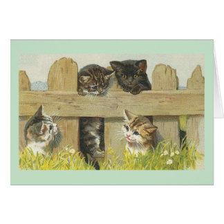 Vintage Kätzchen auf Zaun-Anmerkungs-Karte Grußkarte