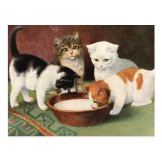 Vintage Katzen und Milch Postkarten