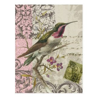 Vintage Kolibri… Postkarte
