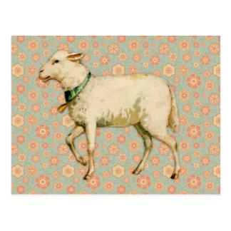 Vintage Lamm-Kunst Postkarte