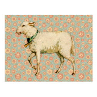Vintage Lamm-Kunst Postkarten