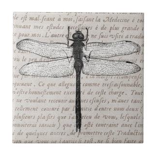 Vintage Libellen-und Antiken-Text-Collage Kleine Quadratische Fliese