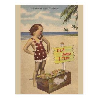 Vintage Muscheln-Florida-Postkarte Postkarte