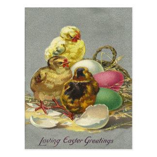 Vintage Ostern-Grüße 1909 Postkarte