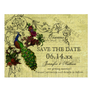 Vintage Pfau-Save the Date Postkarte