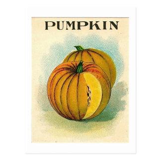 Vintage pumpking Samenpaketpostkarte Postkarte