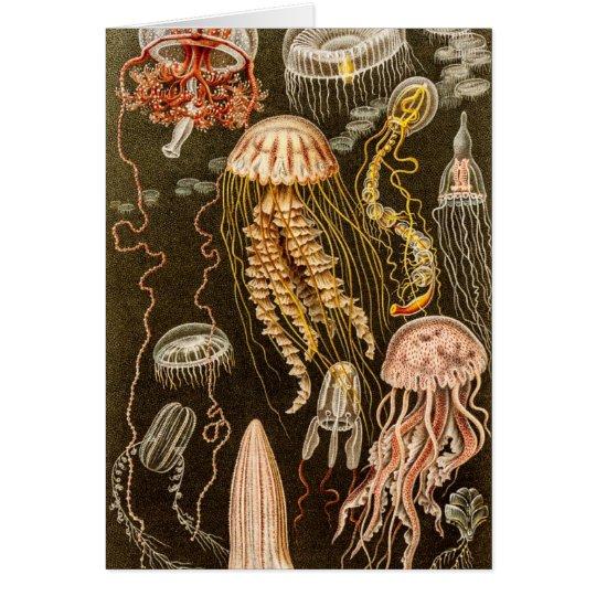 Vintage Quallen-Antiken-Qualle-Illustration Mitteilungskarte