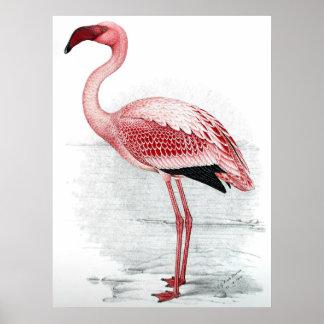 Vintage rosa Flamingo-Malerei Poster